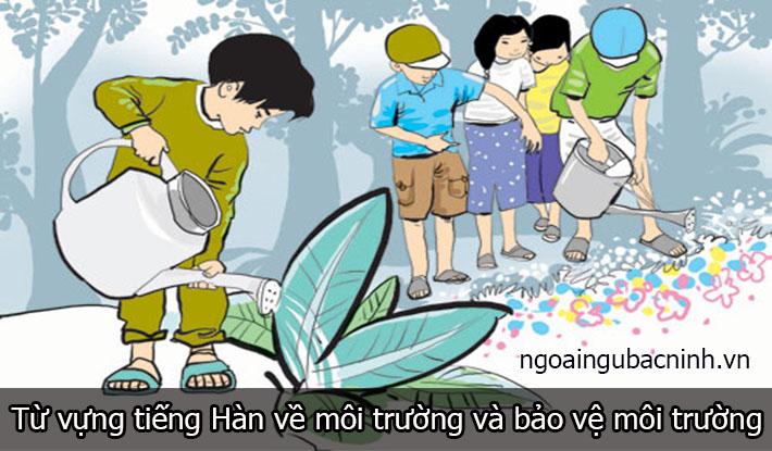 Từ vựng tiếng Hàn về môi trường thông dụng