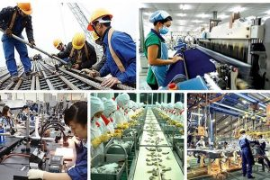 Từ vựng tiếng Hàn liên quan đến các ngành công nghiệp