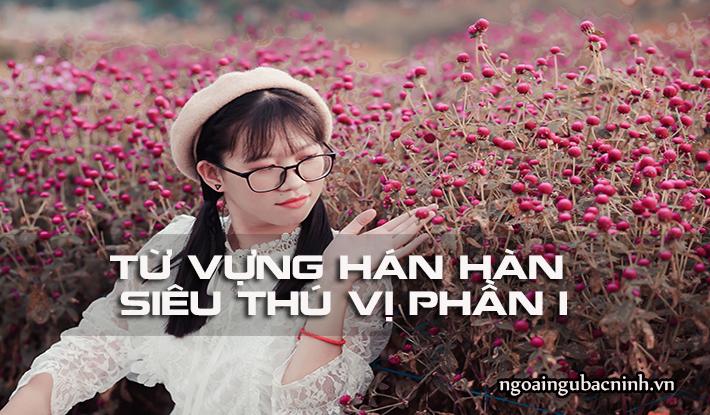 Từ vựng Hán Hàn siêu thú vị phần 1