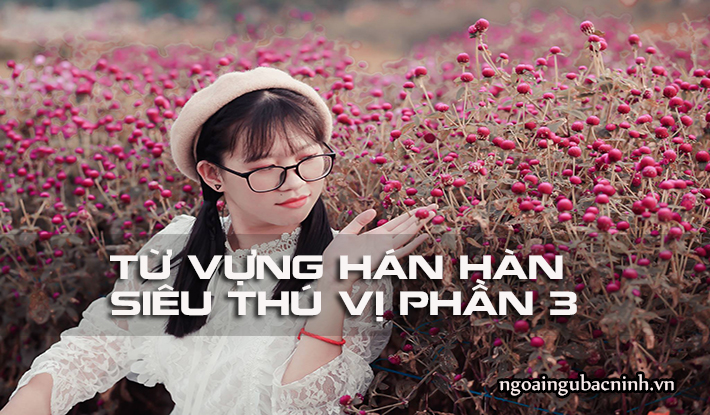 Từ vựng Hán Hàn siêu thú vị phần 3